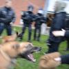 Göttingen am 10.04.14 AktivistInnen verhindern Abschiebung!!!