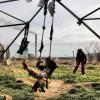 Recherchen im Kosovo ergeben: Keine Sicherheit – für Roma am allerwenigsten